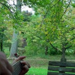 Upbeat-Songwriting-in-West-Chester-PA (3)