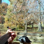 Ever-Heart-Songwriting-at-Everhart-Park (1)
